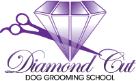 diamond-cut-logo
